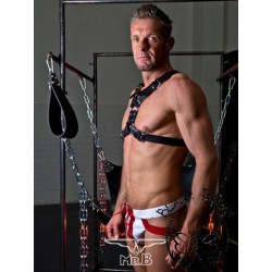 Y-front Harness