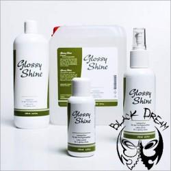 Glossy Shine – latex polish