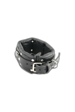 Padded Lockable Collar