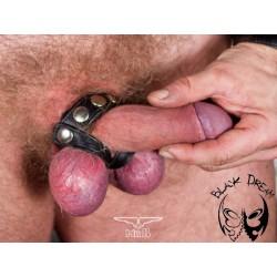 Cockstrap with 2 ballstraps