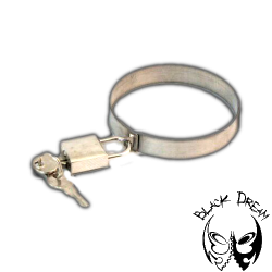 Locking Clip
