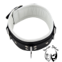 slavecollar-with-d-rings-and-color-padding