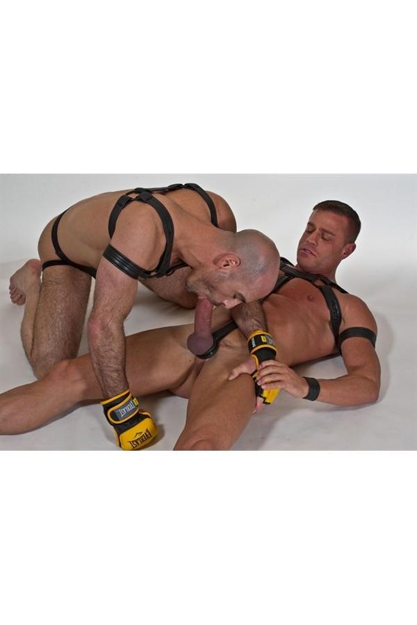 Neoprene Bulldog Harness - fekete